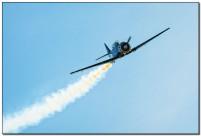 Airshow Stellenbosch 395 BP