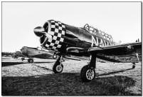 Airshow Stellenbosch 691 B&W BP
