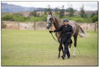 Horse Show 077 copy