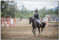 Horse Show 174 copy