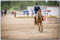 Horse Show 244 copy